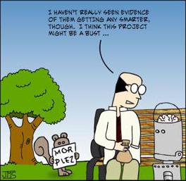 the petri dish squirrels